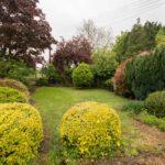 OSR 404 Front garden LR